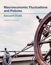 Macroeconomic Fluctuations and Policies
