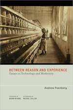 Between Reason and Experience – Essays in Technology and Modernity