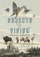 Objects of Vision