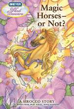 Magic Horses, or Not?:  A Sirocco Story