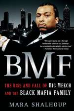 BMF:  The Rise and Fall of the Big Meech and the Black Mafia Family