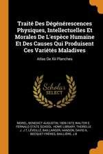 Traité Des Dégénérescences Physiques, Intellectuelles Et Morales de l'Espèce Humaine Et Des Causes Qui Produisent Ces Variétés Maladives: Atlas de XII