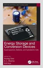 Energy Storage and Conversion Devices