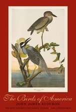 The Birds of America – The Bien Choromolithographic Edition