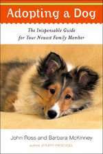 Adopting a Dog – The Indispensable Guide for your Newest Family Member