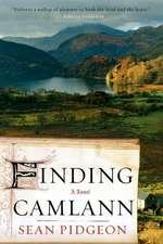 Finding Camlann – A Novel