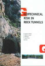 Geotechnical Risk in Rock Tunnels: Selected Papers from a Course on Geotechnical Risk in Rock Tunnels, Aveiro, Portugal, 16ߝ17 April 2004