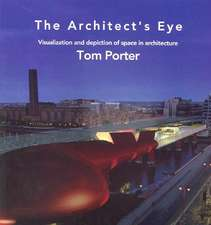 Architect's Eye:  Visualization and Depiction of Space in Architecture