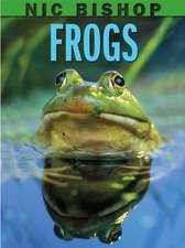 Nic Bishop:  Frogs