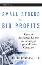 Small Stocks for Big Profits: Generate Spectacular Returns by Investing in Up–and–Coming Companies