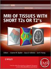 MRI of Tissues with Short T2s or T2∗s