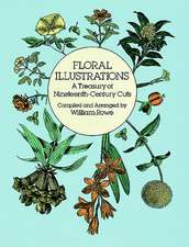 Floral Illustrations:  A Treasury of Nineteenth-Century Cuts