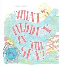 What's Hidden in the Sea?