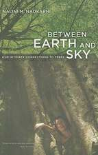 Between Earth and Sky – Our Intimate Connections to Trees