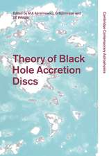 Theory of Black Hole Accretion Discs