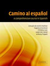 Camino al español: A Comprehensive Course in Spanish