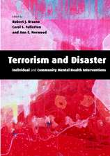 Terrorism and Disaster Paperback with CD-ROM: Individual and Community Mental Health Interventions