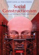 Social Constructionism: Sources and Stirrings in Theory and Practice