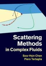 Scattering Methods in Complex Fluids