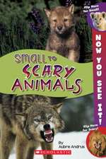 Now You See It! Small to Scary Animals