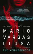 Vargas Llosa, M: Neighborhood