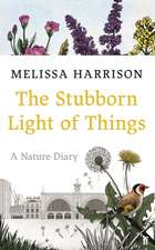 The Stubborn Light of Things