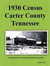 1930 Census Carter County Tennessee