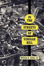 In the Streets of Vinegar Hill