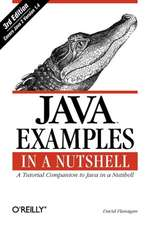 Java Examples in a Nutshell 3e