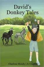 David's Donkey Tales