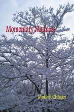 Momentary Madness:  Book One of the Celebration Trilogy