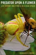 Predator upon a Flower – Life History and Fitness in a Crab Spider