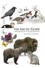 The Arctic Guide – Wildlife of the Far North