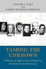 Taming the Unknown – A History of Algebra from Antiquity to the Early Twentieth Century