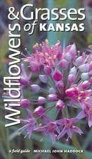 Wildflowers & Grasses of KS (PB)