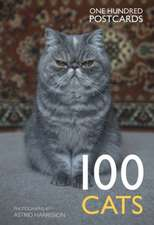 100 Cats:  One Hundred Postcards