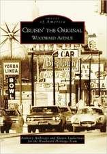 Cruisin' the Original Woodward Avenue