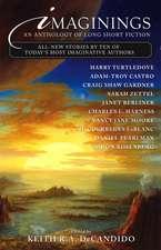 Imaginings: An Anthology of Long Short Fiction