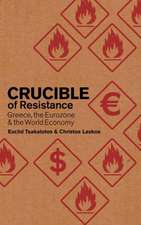 Crucible of Resistance: Greece, the Eurozone and the World Economic Crisis