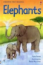 Davies, K: Elephants