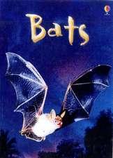 Cullis, M: Bats