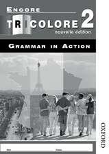 Encore Tricolore Nouvelle 2 Grammar in Action Pack (x8)