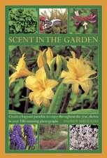Scent in the Garden