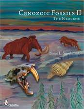 Cenozoic Fossils II:  The Neogene
