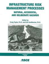 Infrastructure Risk Management Processes