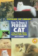 """Guide to Owning a Persian Cat: """""""""""