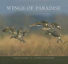 Wings of Paradise:  Birds of the Louisiana Wetlands