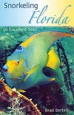 Snorkeling Florida:  50 Excellent Sites