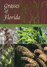 Grasses of Florida