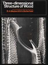 Three-Dimensional Structure of Wood:  A Scanning Electron Microscope Study